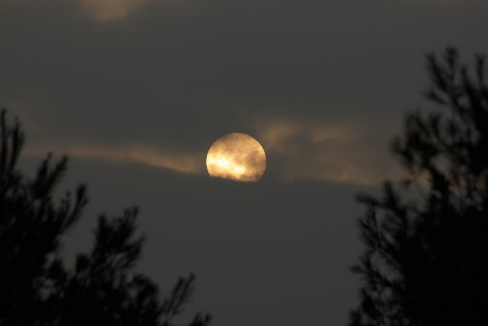 full moon covered with clouds