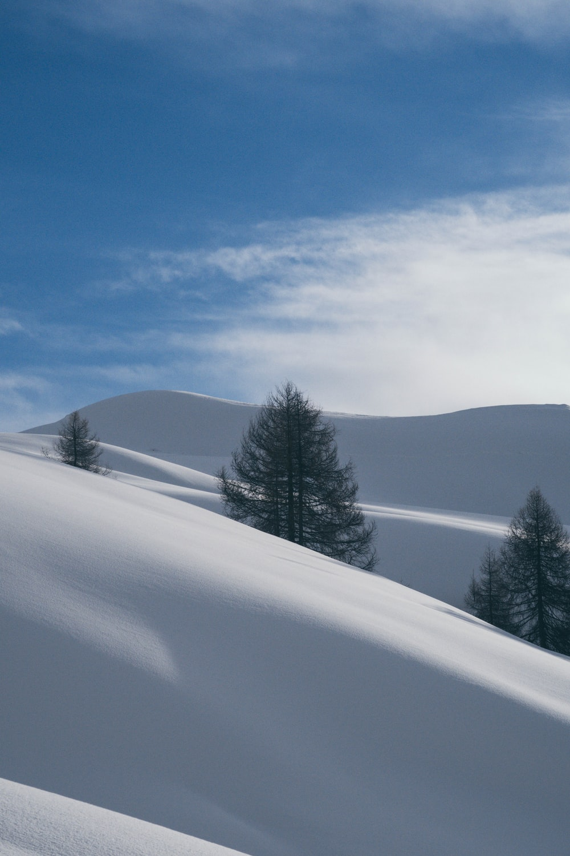 snow covered land under blue sky