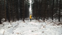 person in yellow jacket stand on snow field surrounded pine trees