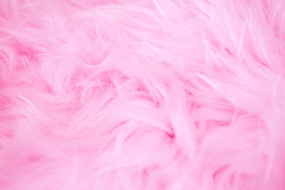 Pink Furry Wallpaper Photo By Sharon McCutcheon Sharonmccutcheon On Unsplash