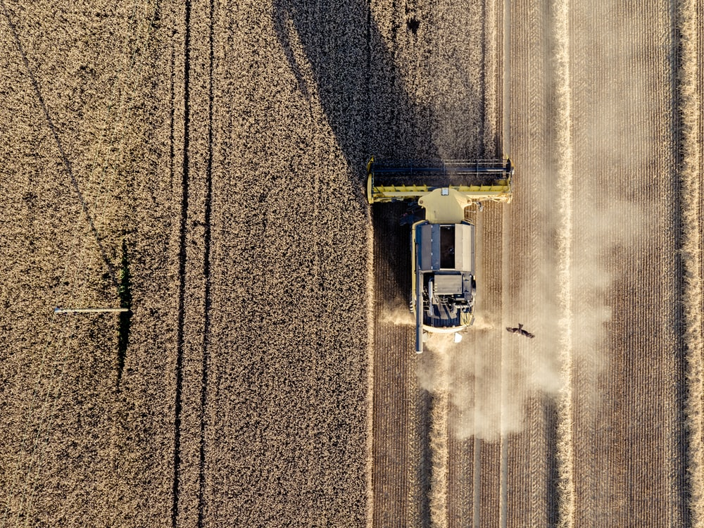 aerial shot of crop field