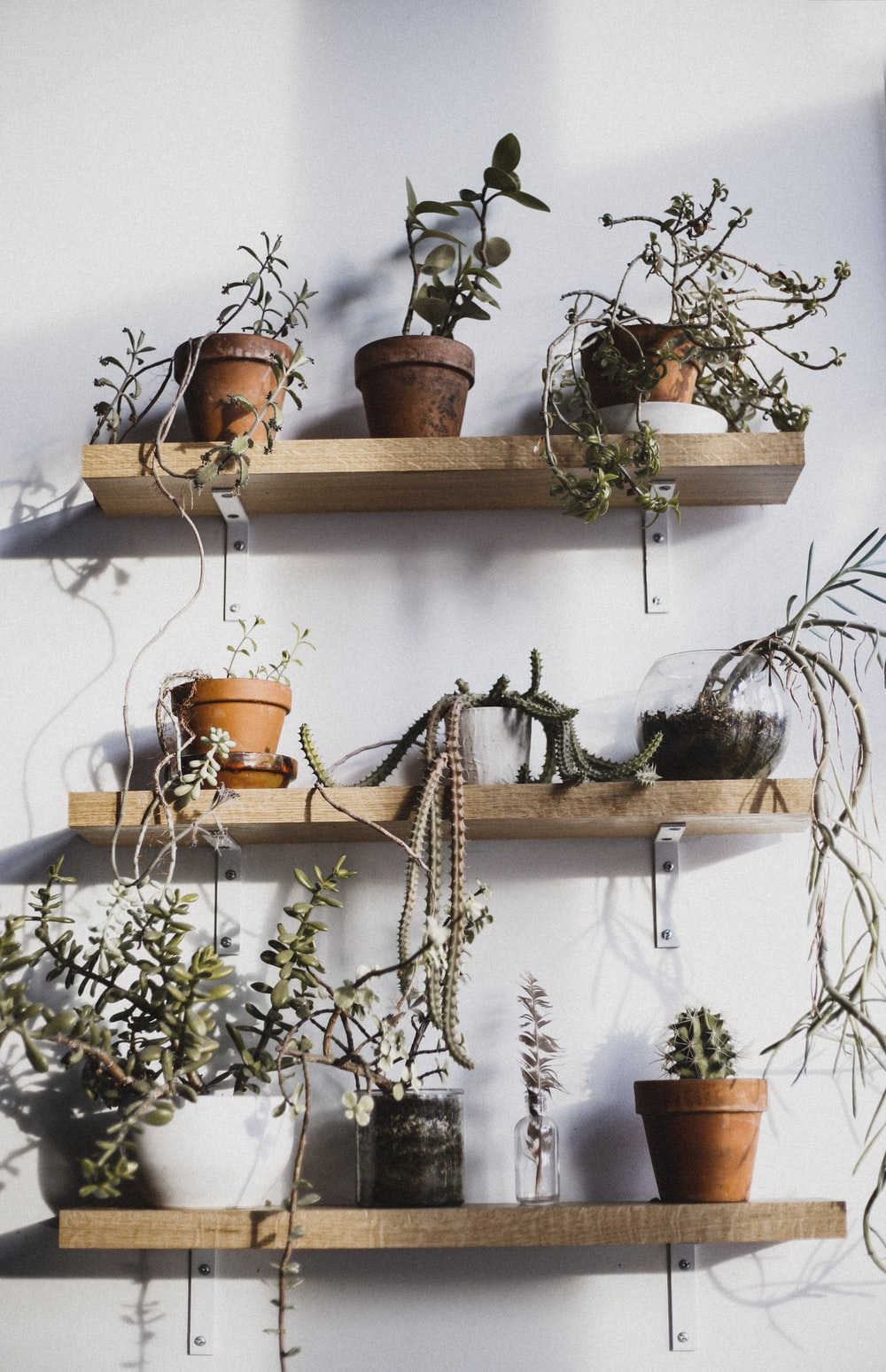 three floating racks filled with flower pots