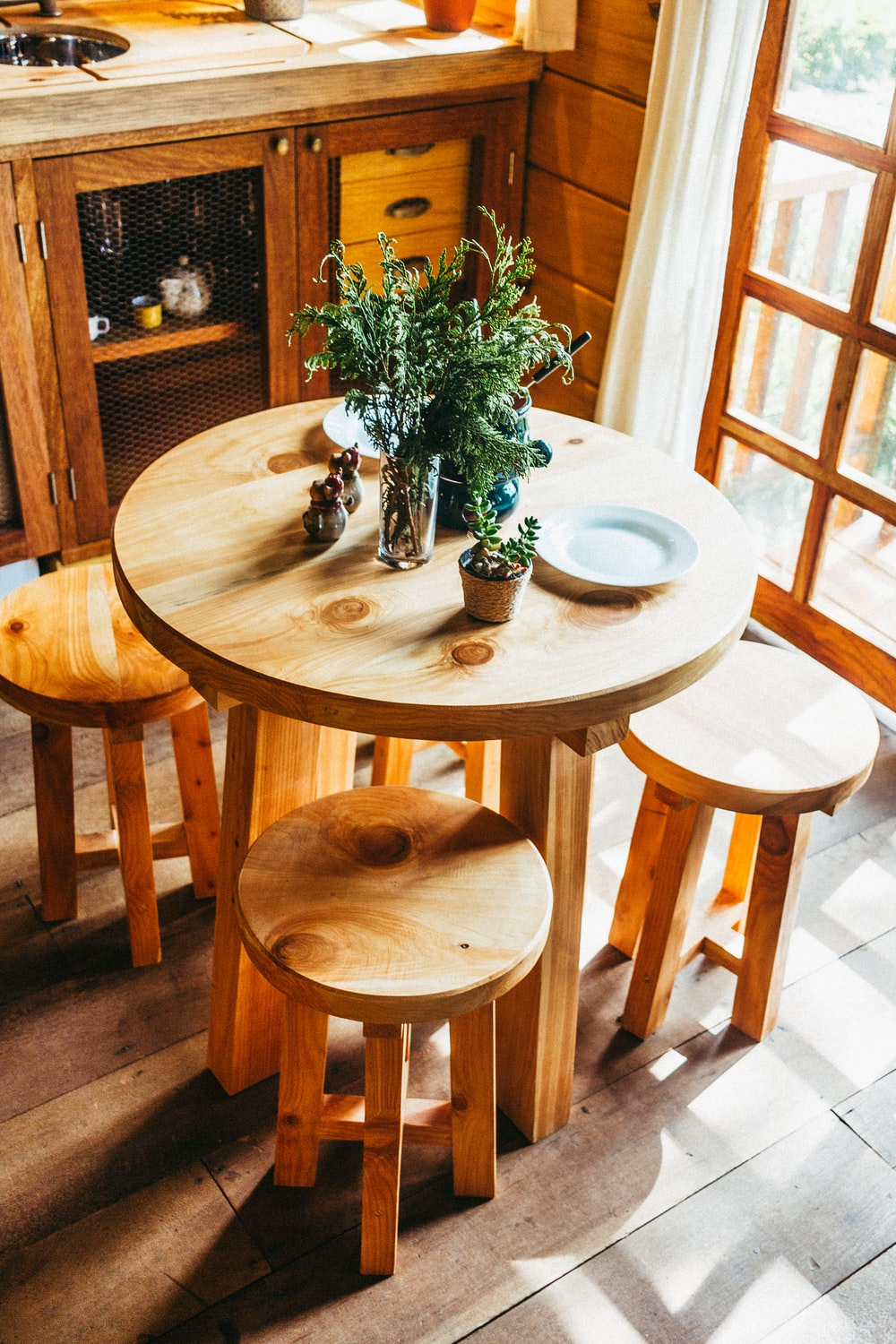 plants on brown wooden table indoors