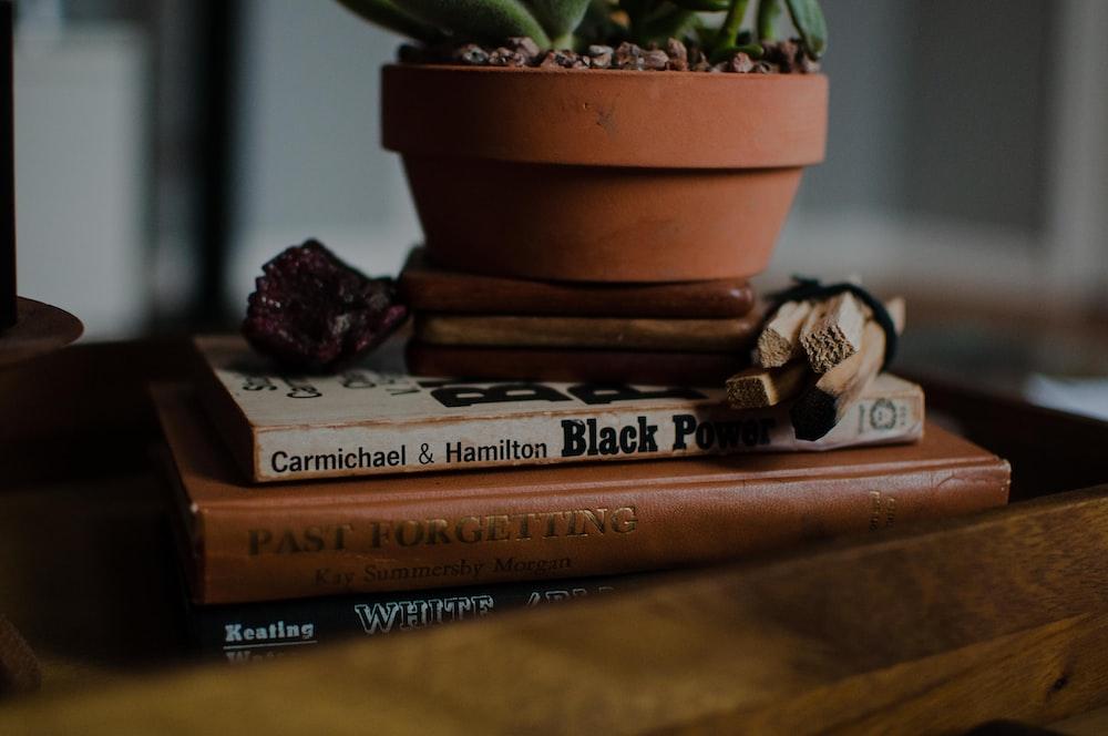 plant pot on books