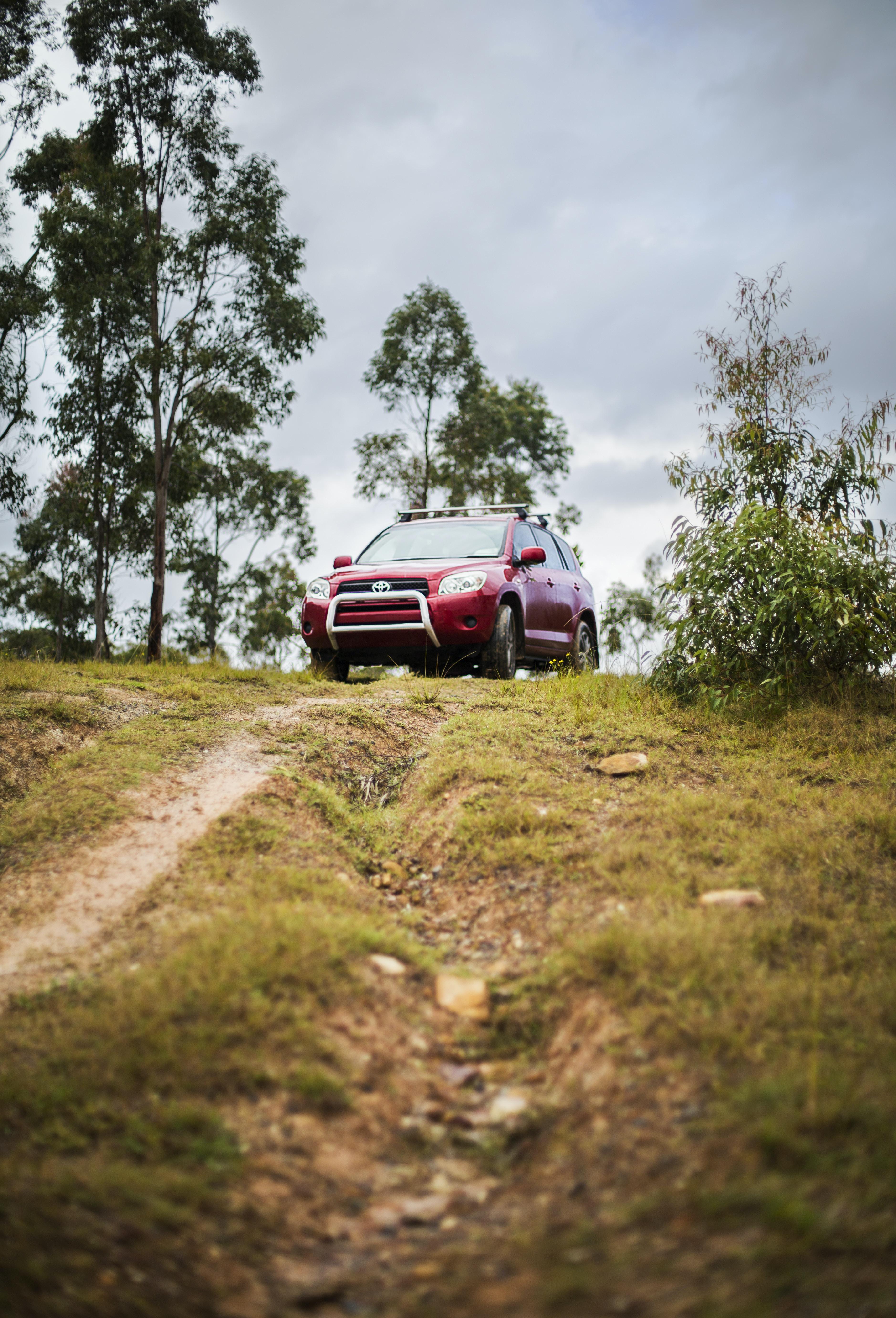 photo of red RAV 4 SUV on roadway