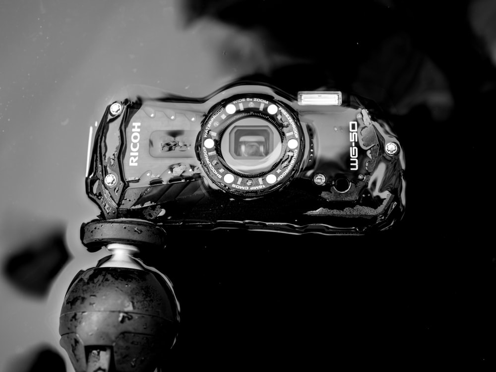 grayscale Ricoh camera