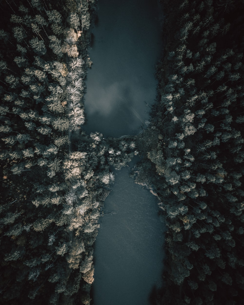 aerial view of green lake surrounded by trees