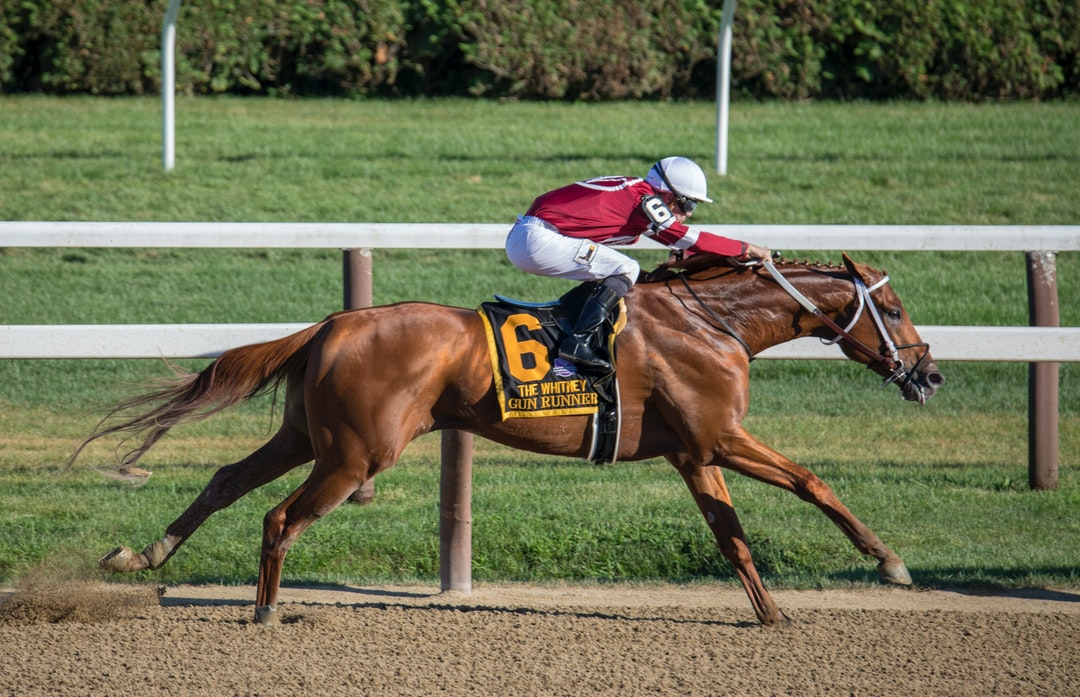 This is a photo of thoroughbred Gun Runner, 2018 Horse of the Year winning the Whitney Stakes at Saratoga - with jockey Florent Geroux.