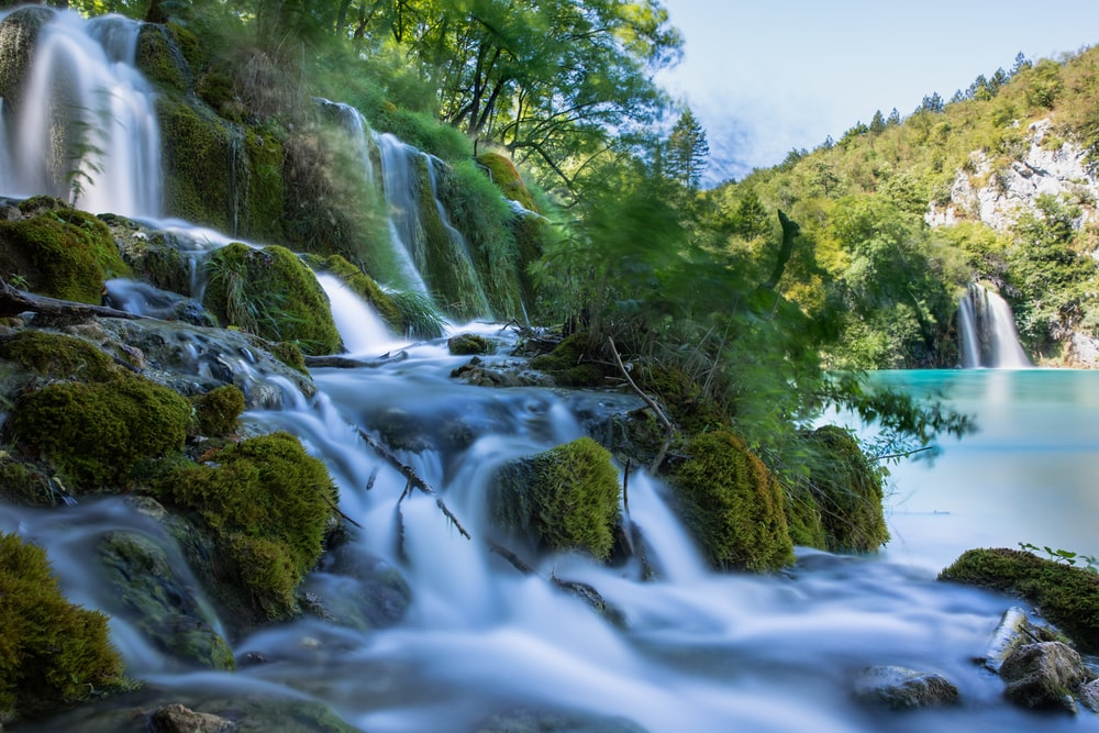 waterfalls surrounded trees