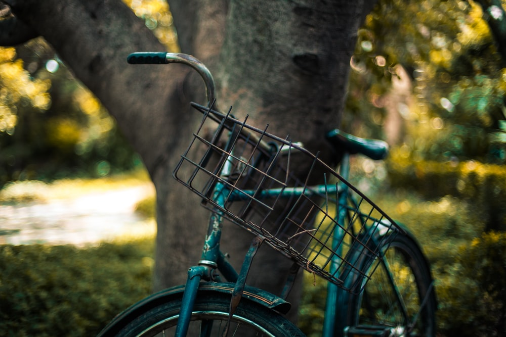 selective focus photography of blue bike parked beside tree