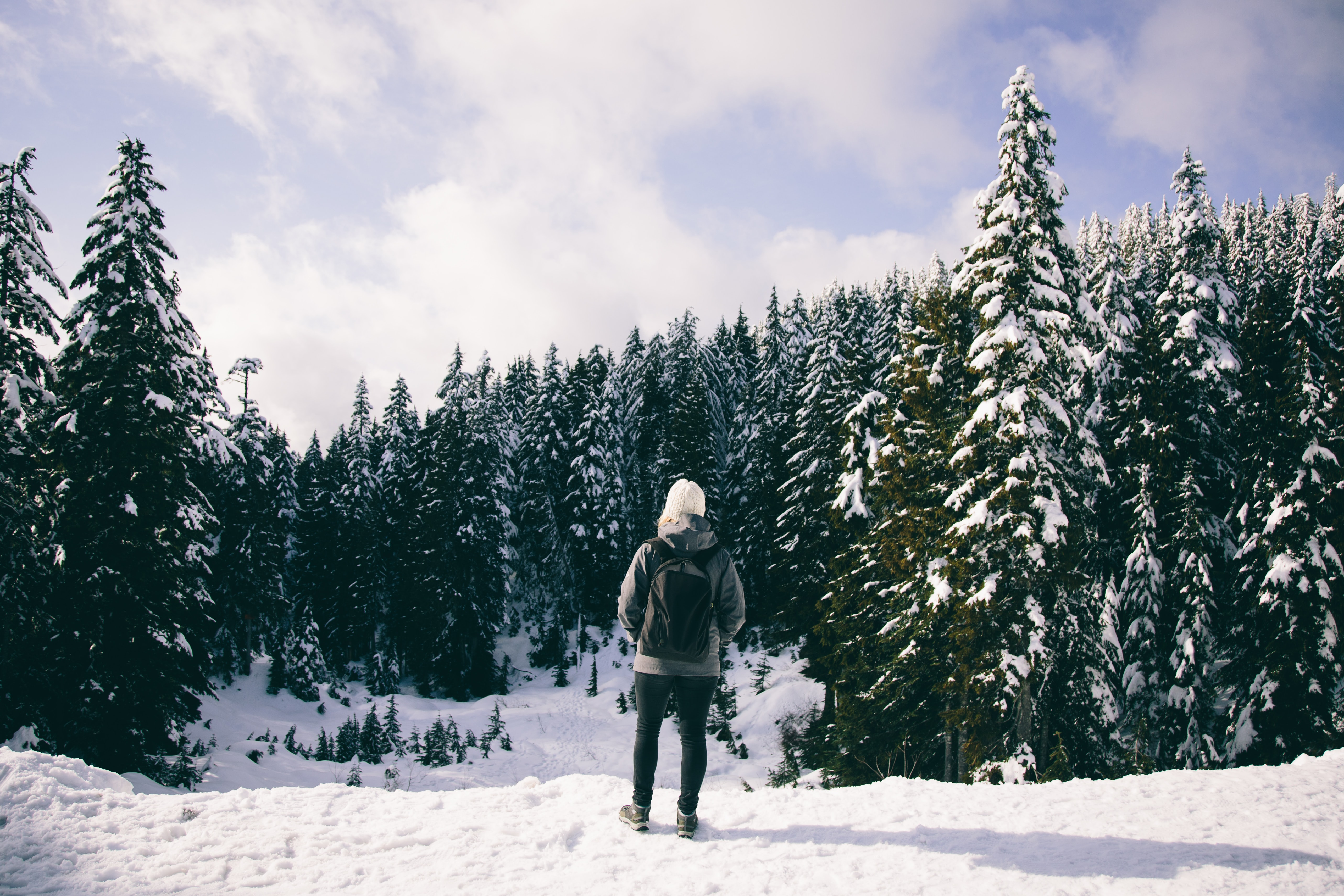 person wearing backpack and facing at trees covered by snow