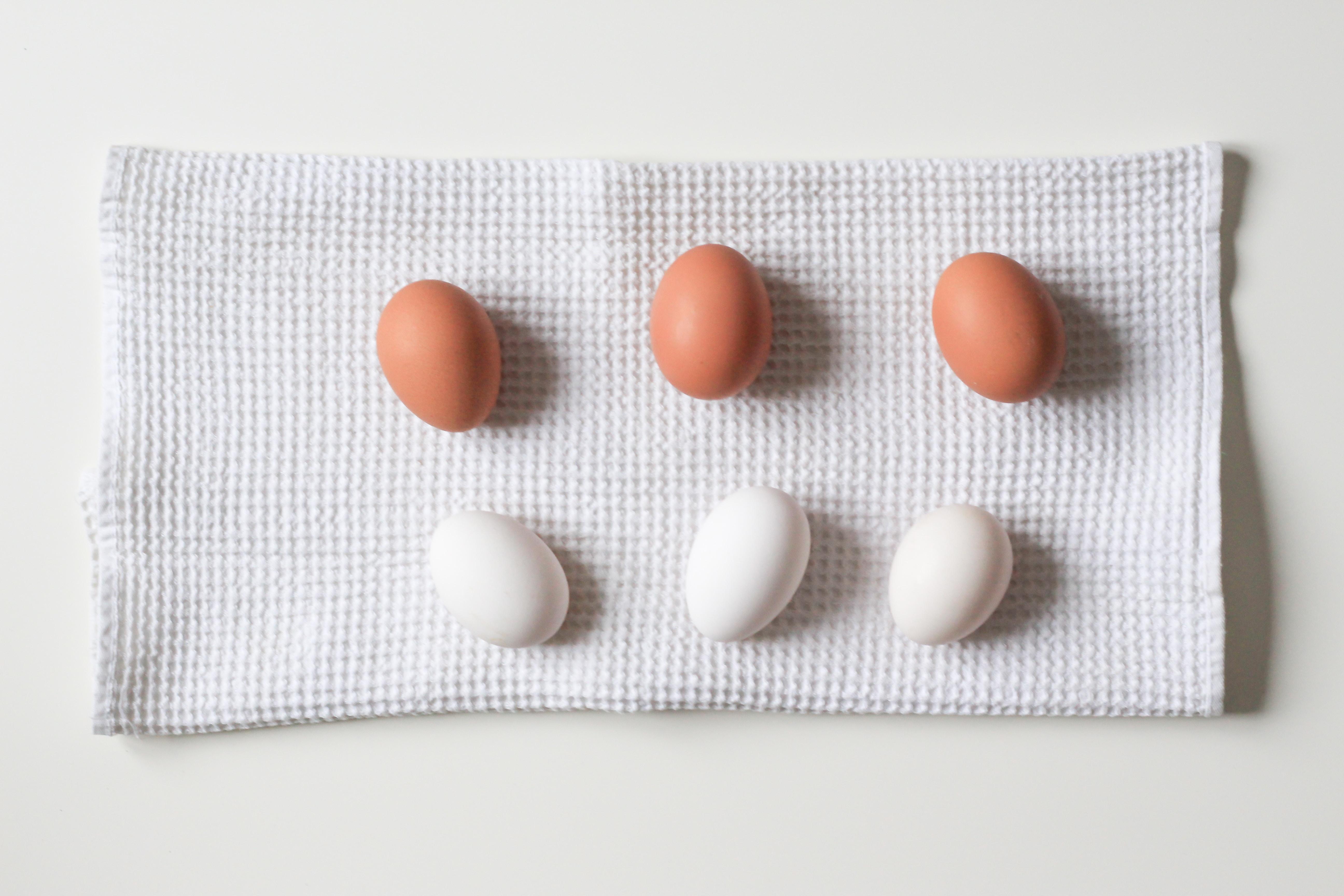 manfaat makanan protein untuk menurunkan berat badan