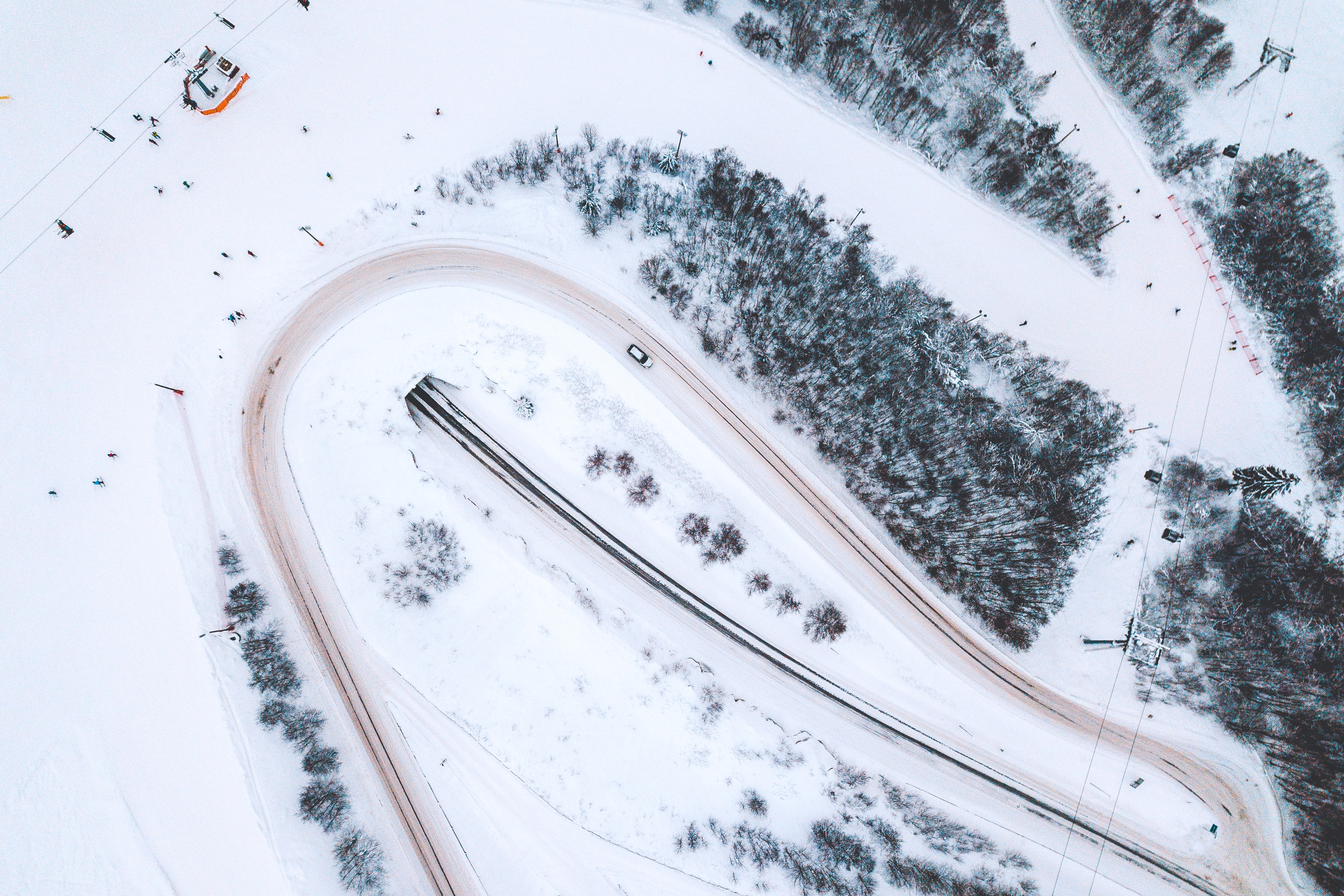 aerial view of trees covered by snow