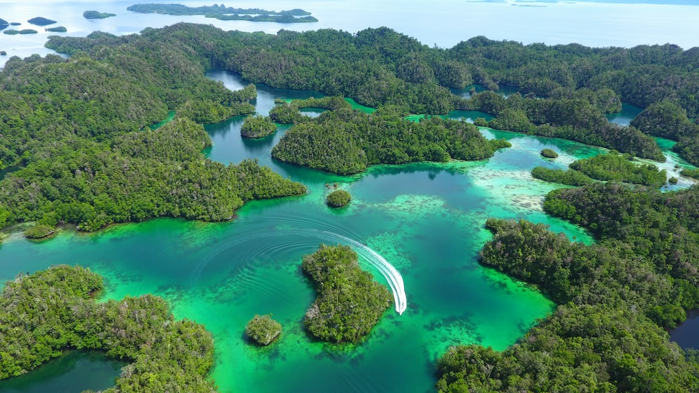 bird's eye view photo of islets during daytime