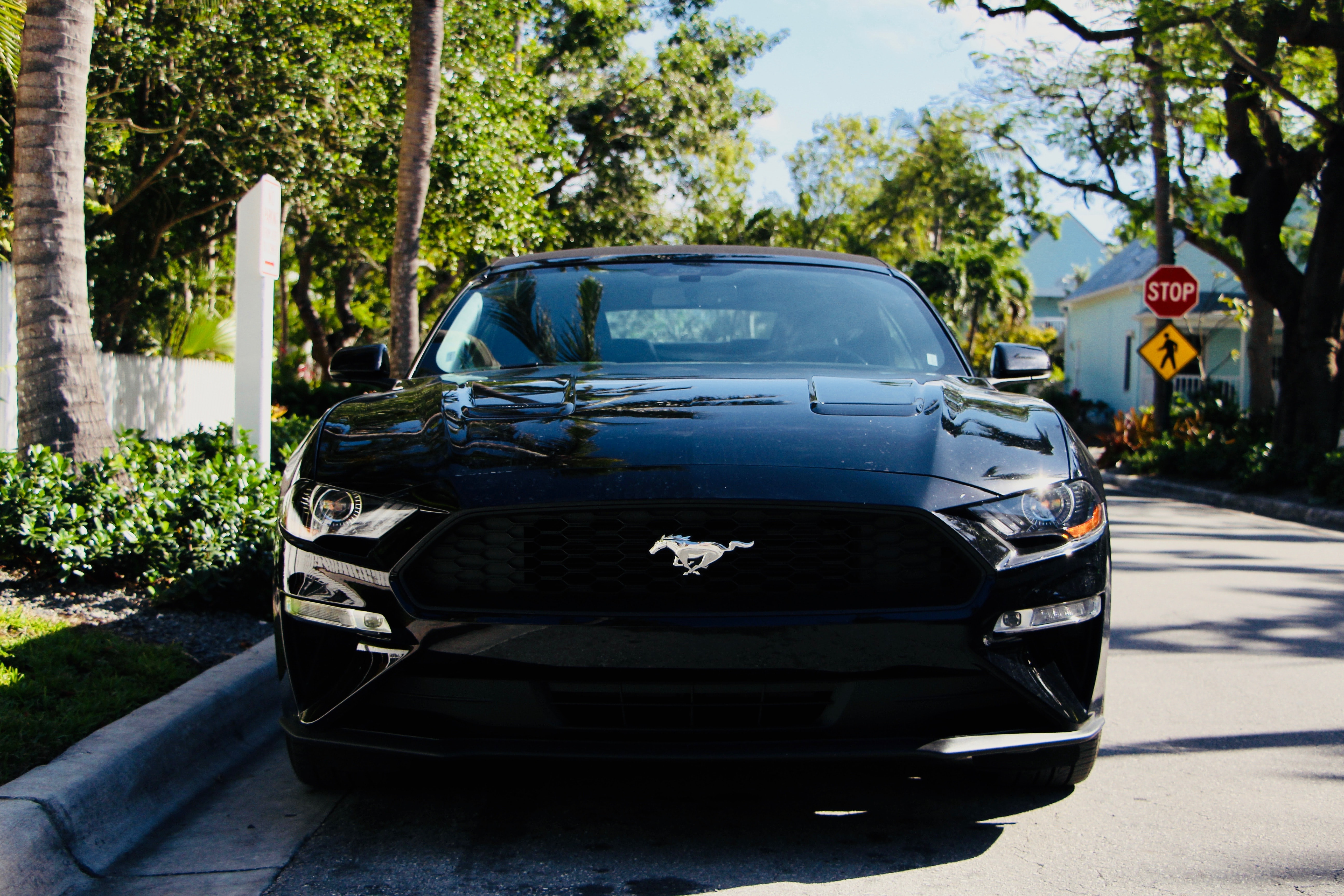 parked black Ford Mustang