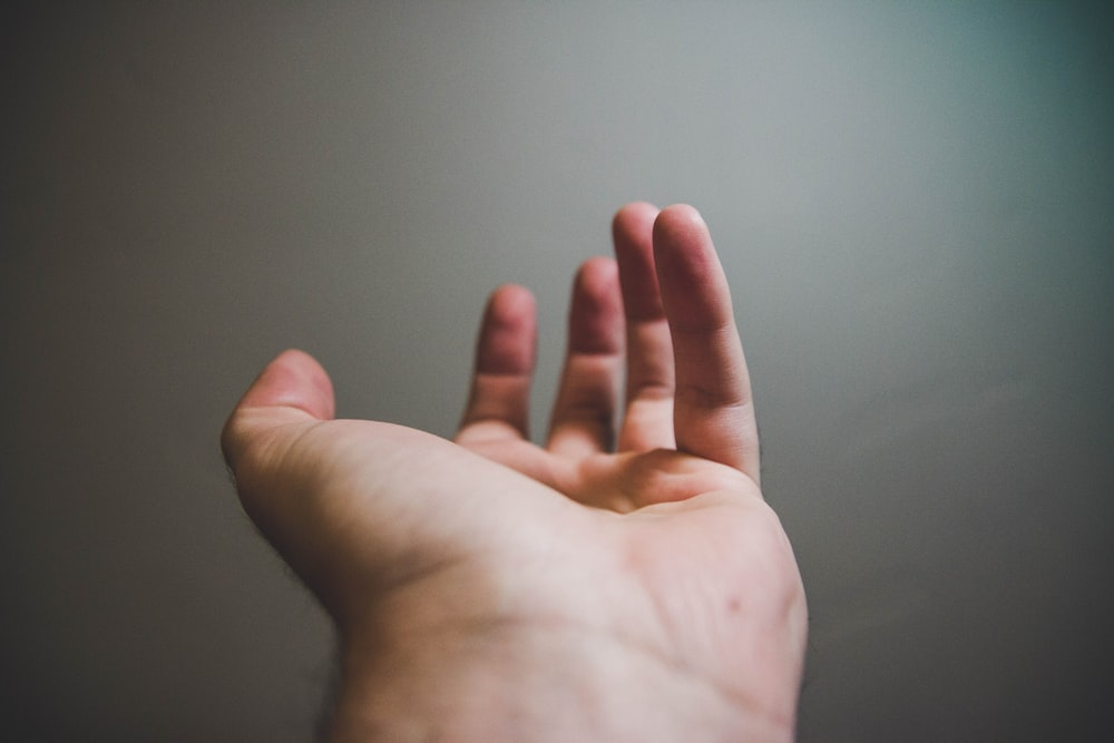 focus photography of person's open hand