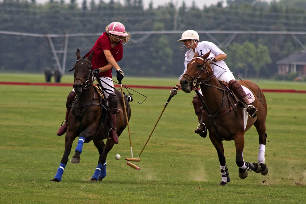 shallow focus photography of two man competing at the polo pony