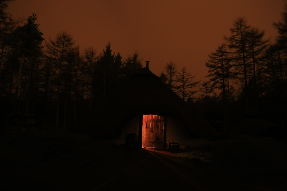 silhouette of house surrounded by trees