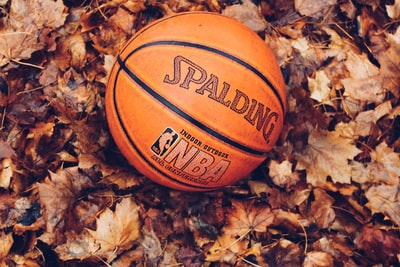 orange Spalding basketball on dried leaves