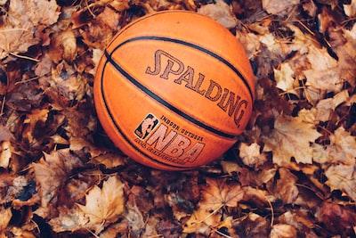 orange Spalding basketball on dried leaves