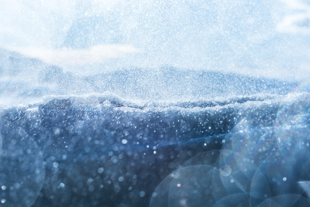 closeup photo of white dust