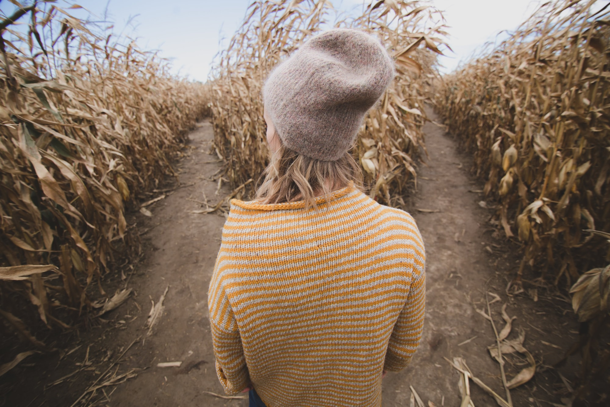 A woman stands in a cornfield, deciding between two directions.