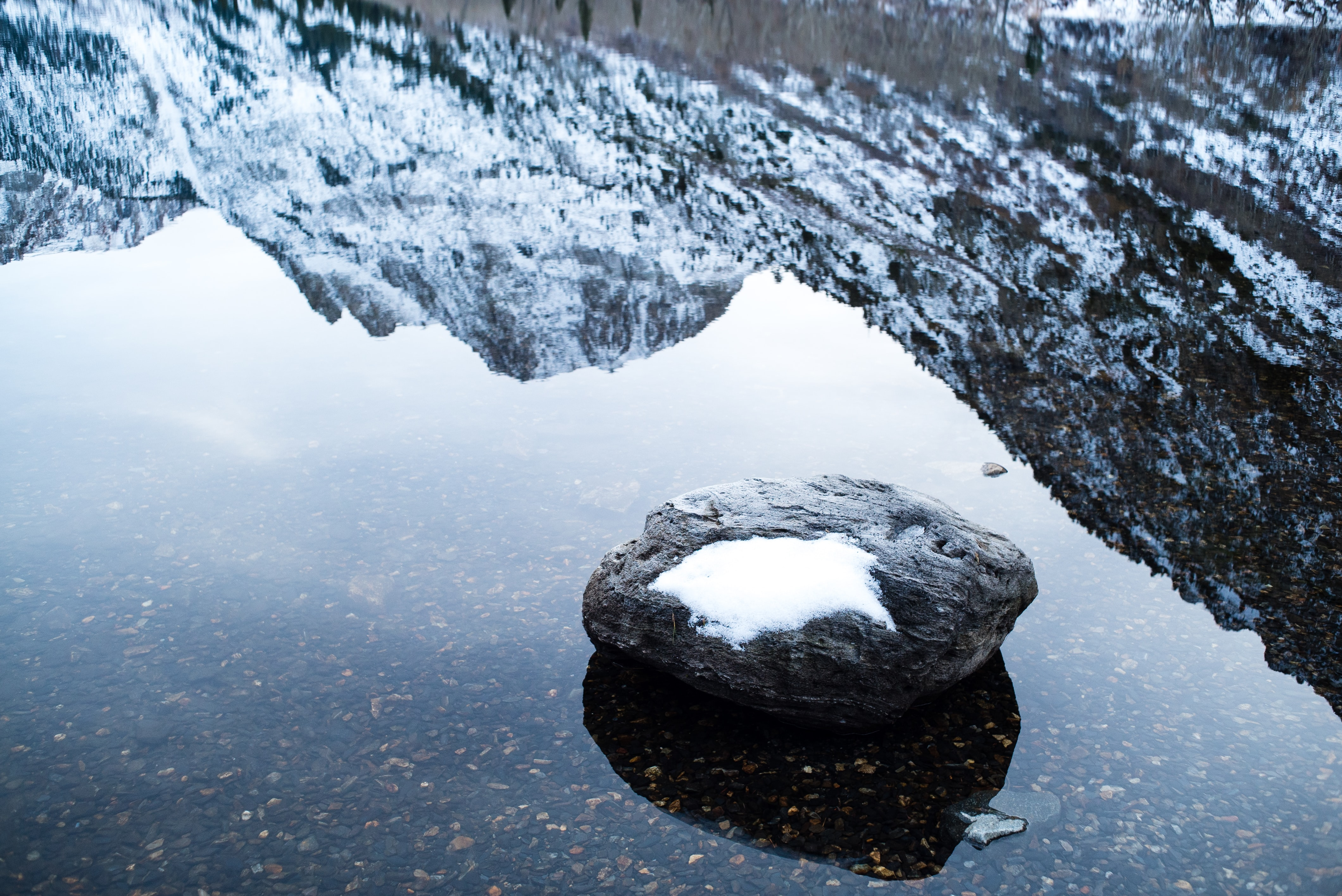 shallow focus photography of rock fragment on body of water