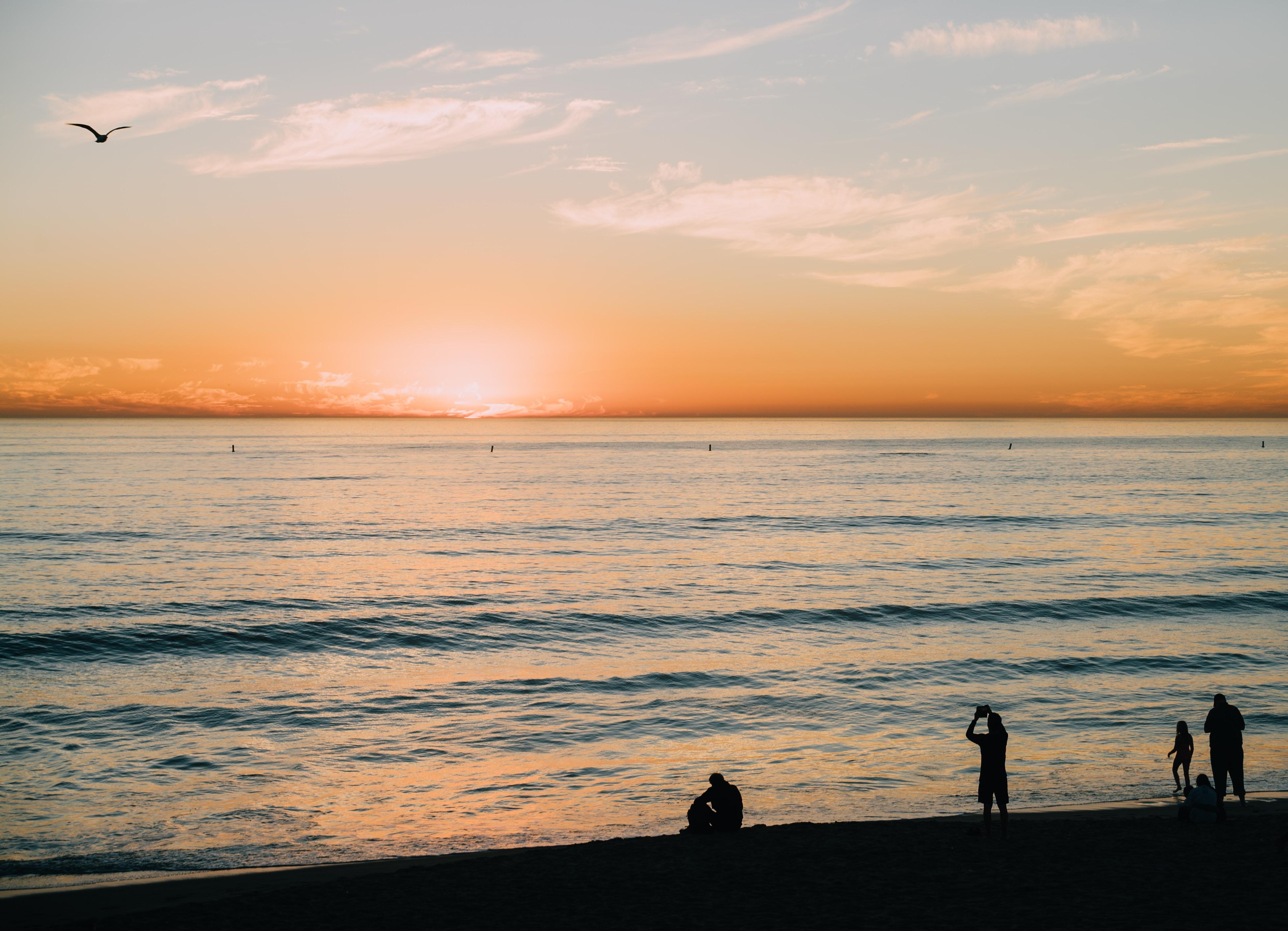 people on beach during sunrise