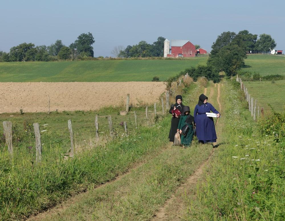 Amish barn-raising near me  | HD photo by Randy Fath