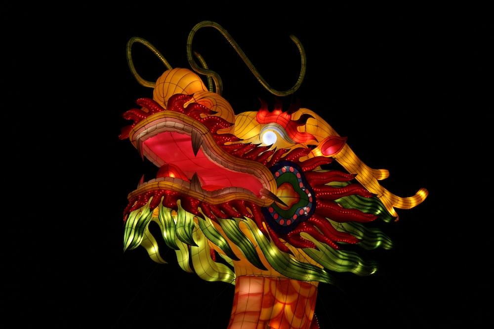 multicolored dragon illustration