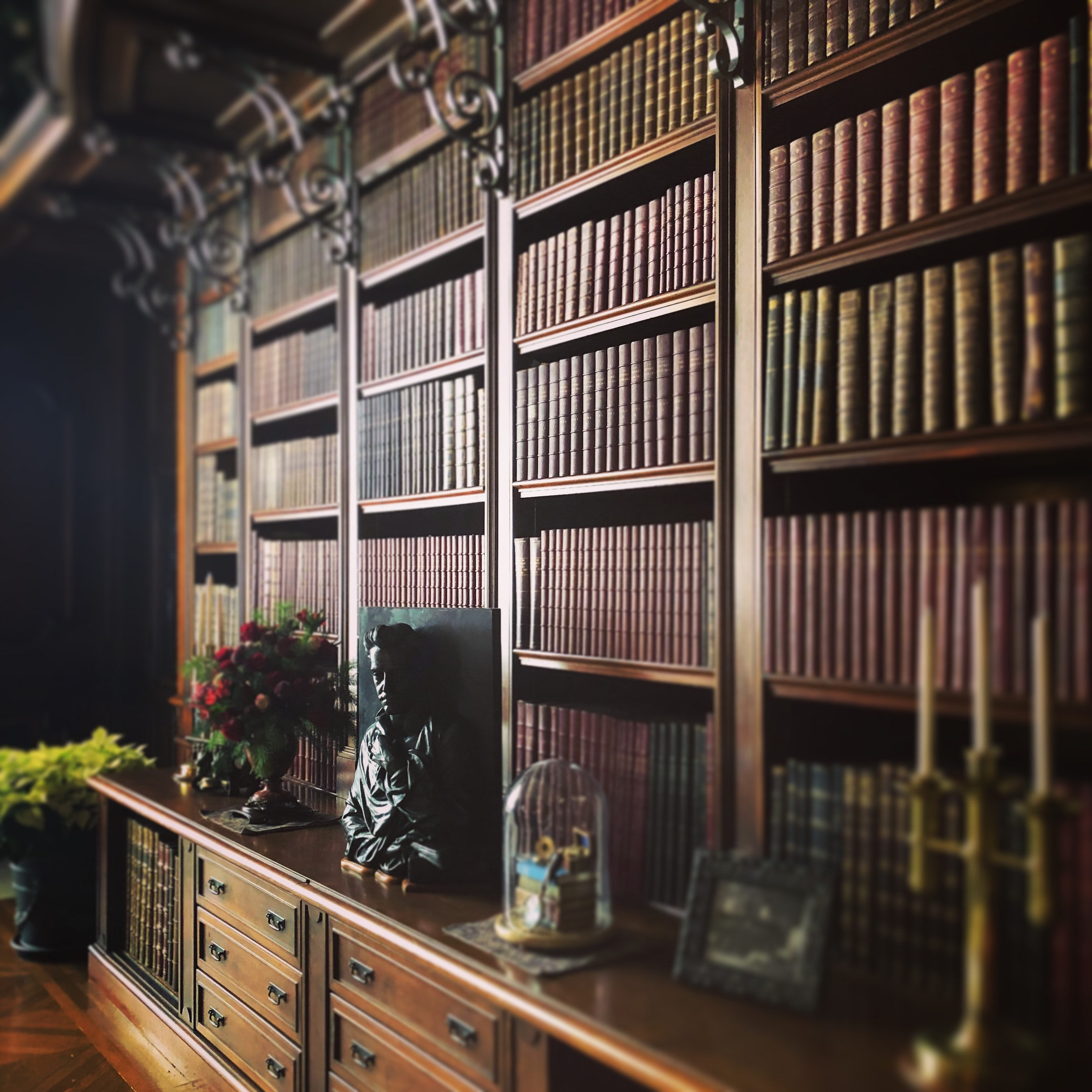 books in brown bookshelf