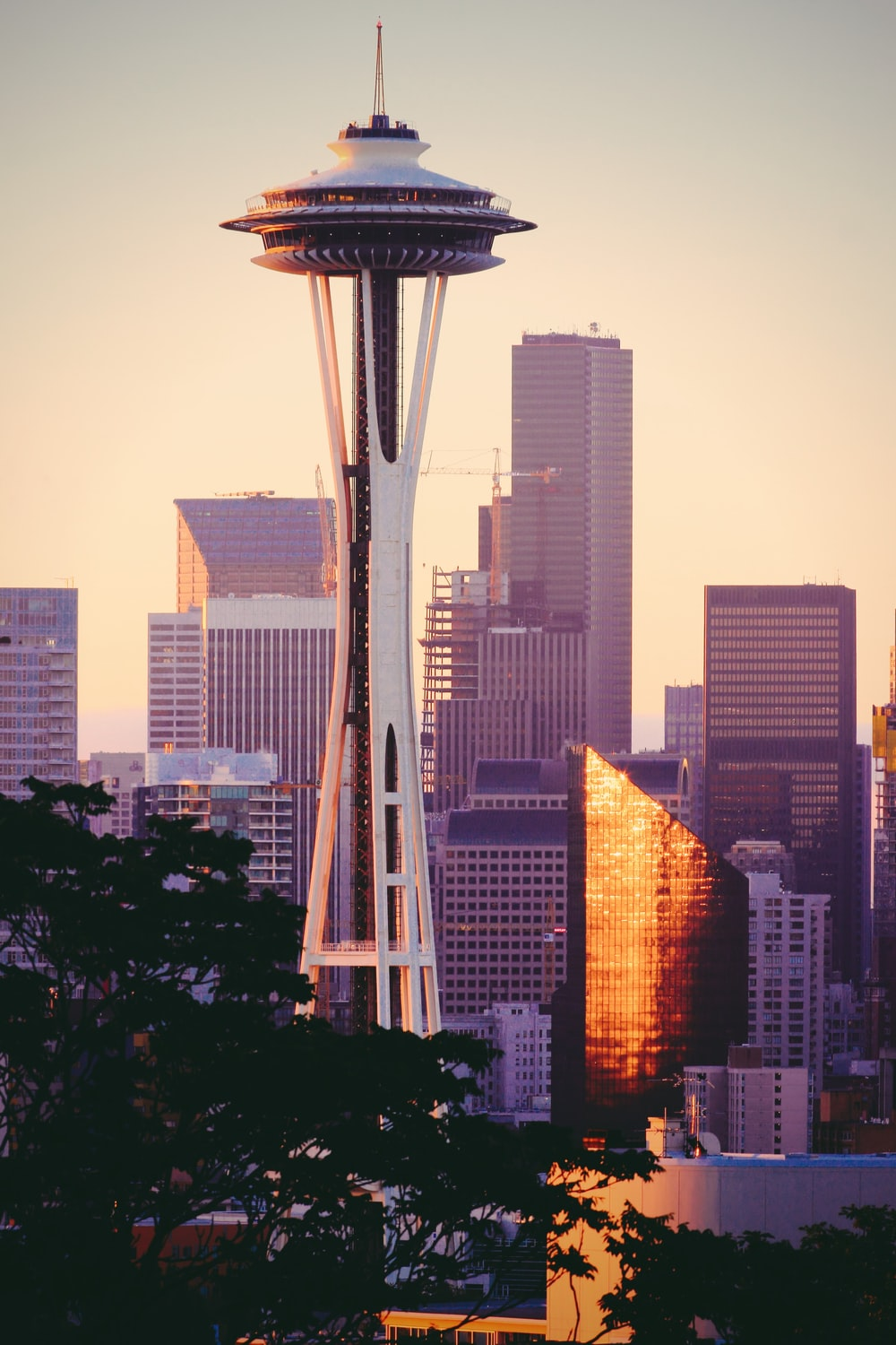 500 Stunning Seattle Pictures Download Free Images On Unsplash