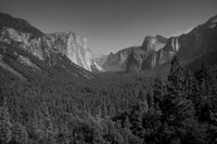 grayscale photography of mountain surrounded by trees