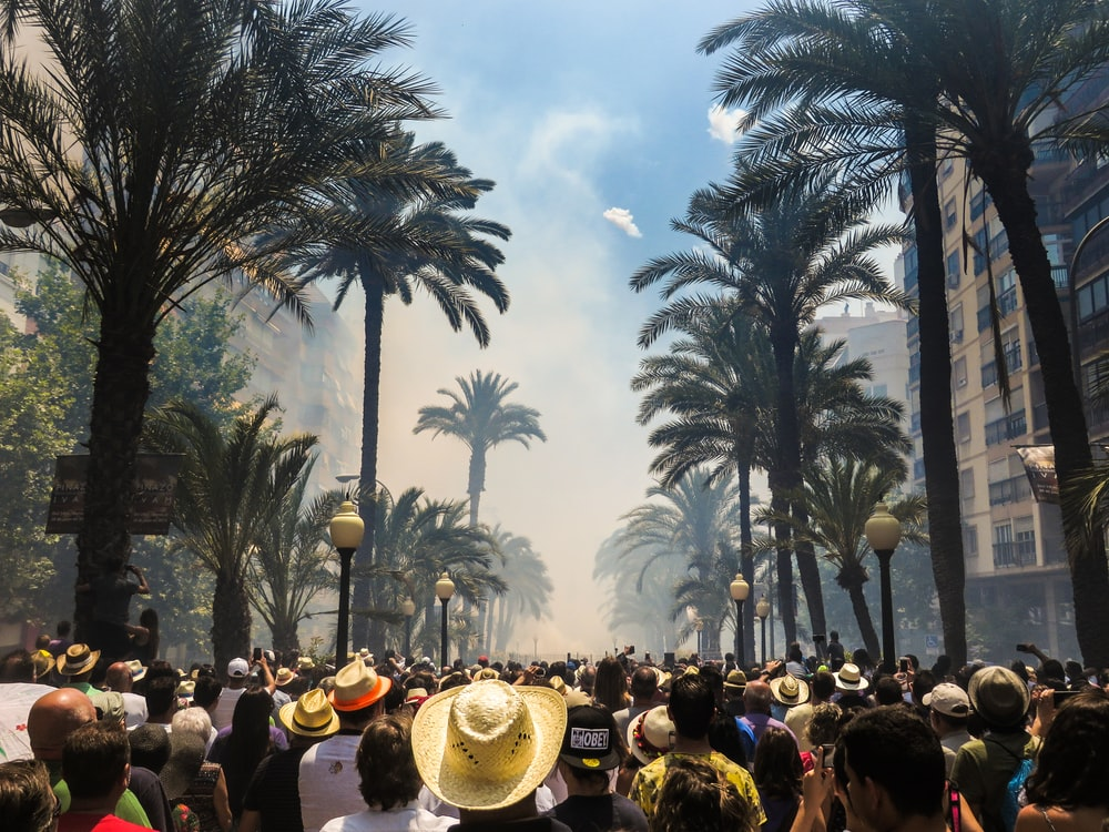 people standing on road between coconut palms surrounded by smoke