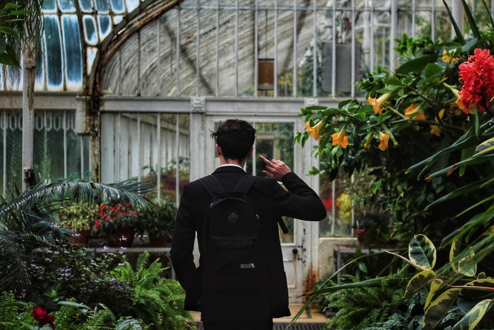 Man Standing Surrounded By Plants Raising His Hands Photo Free