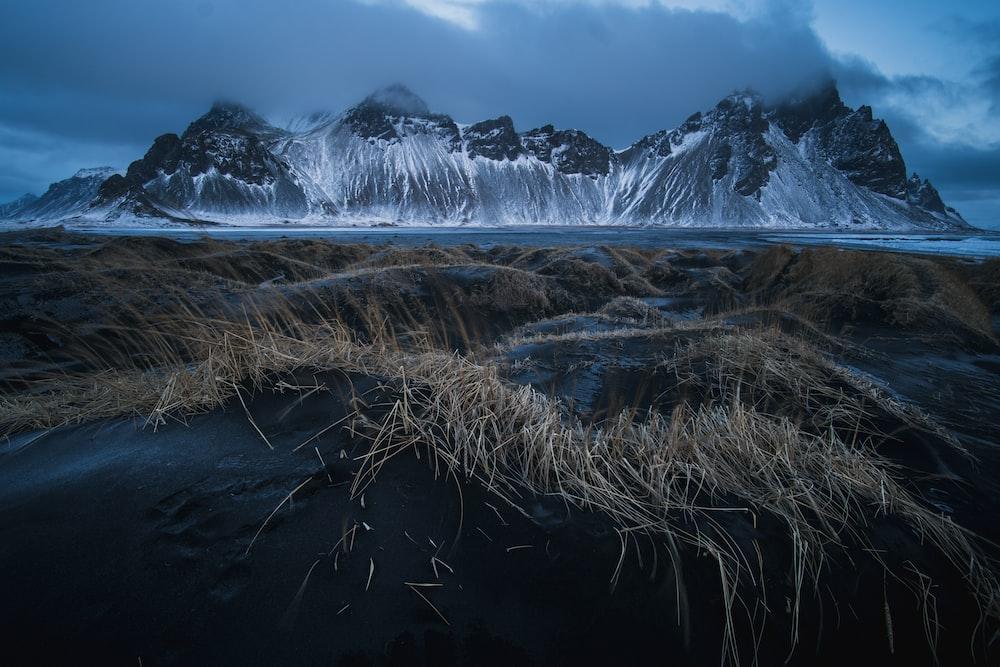 brown grass field in distance glacier mountain at daytime
