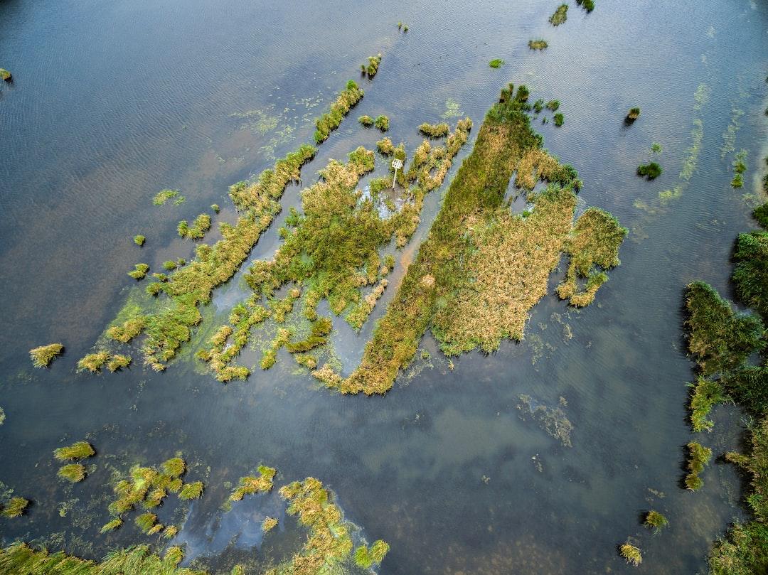 Swap Land in High Tide