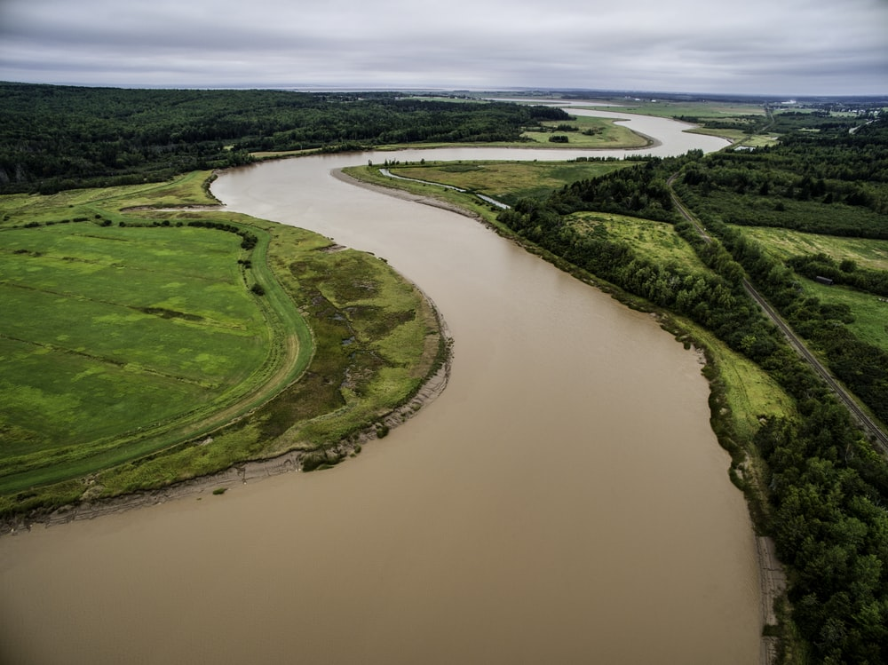 aerial photo of brown river between green grass field at daytime