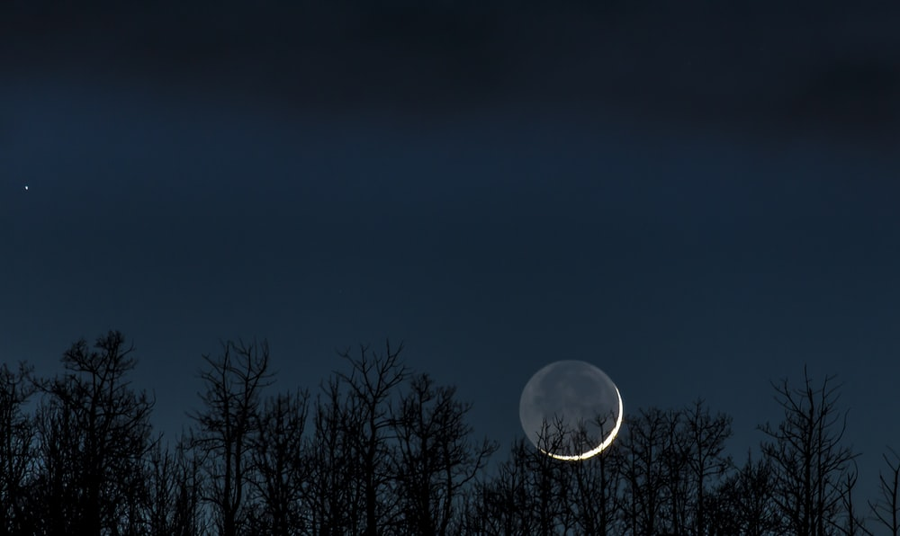 photo of crescent moon over trees at night
