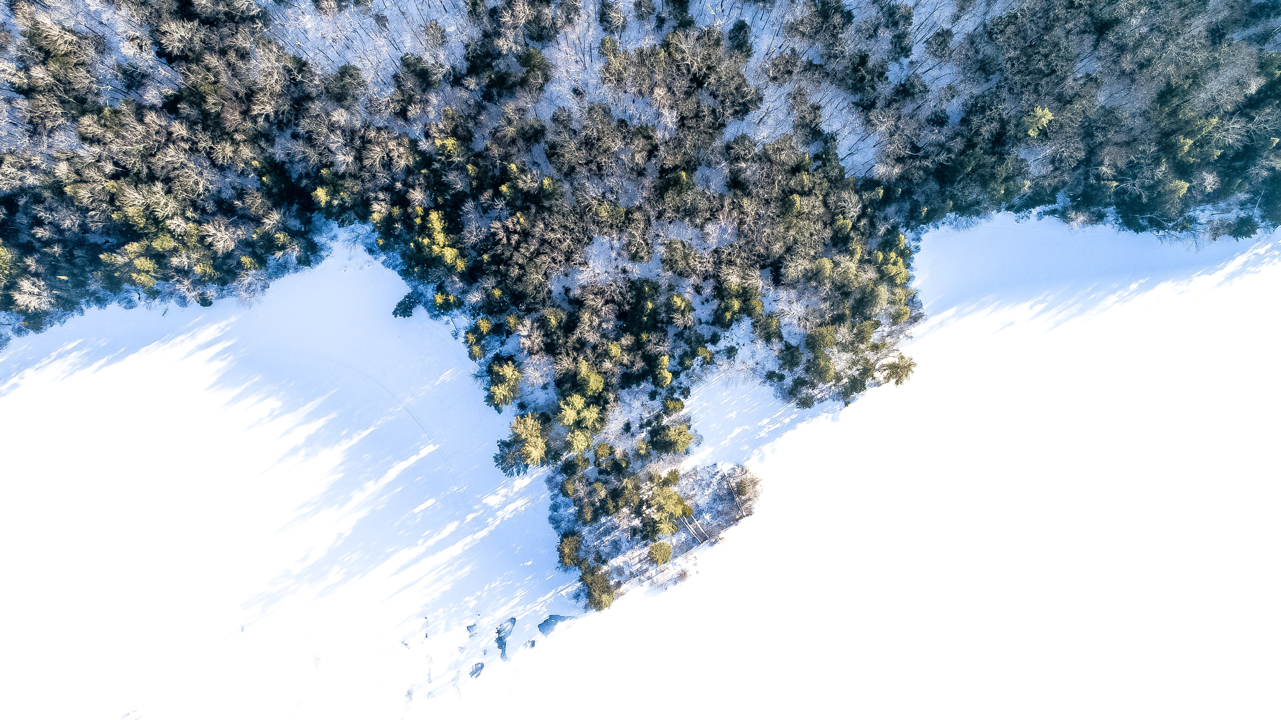 bird's-eye view photography of snow plain and trees