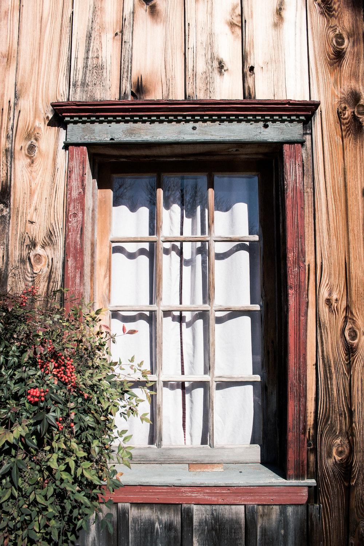 brown multi-panel windowpane near on flowers