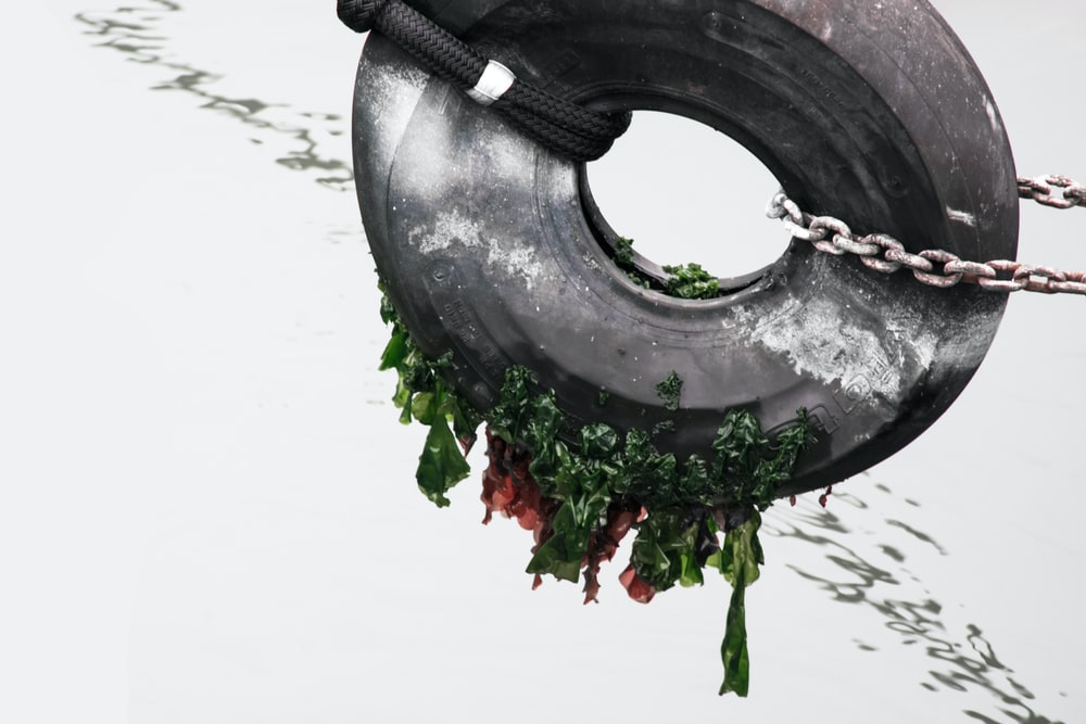 tire and chain painting