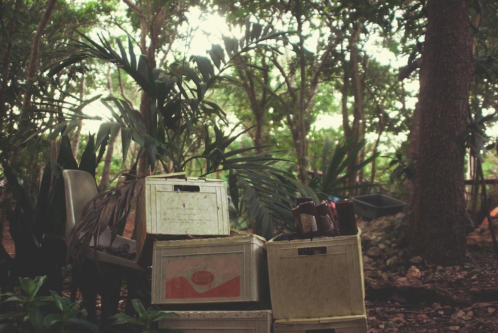 gray metal storage box near brown tree at daytime