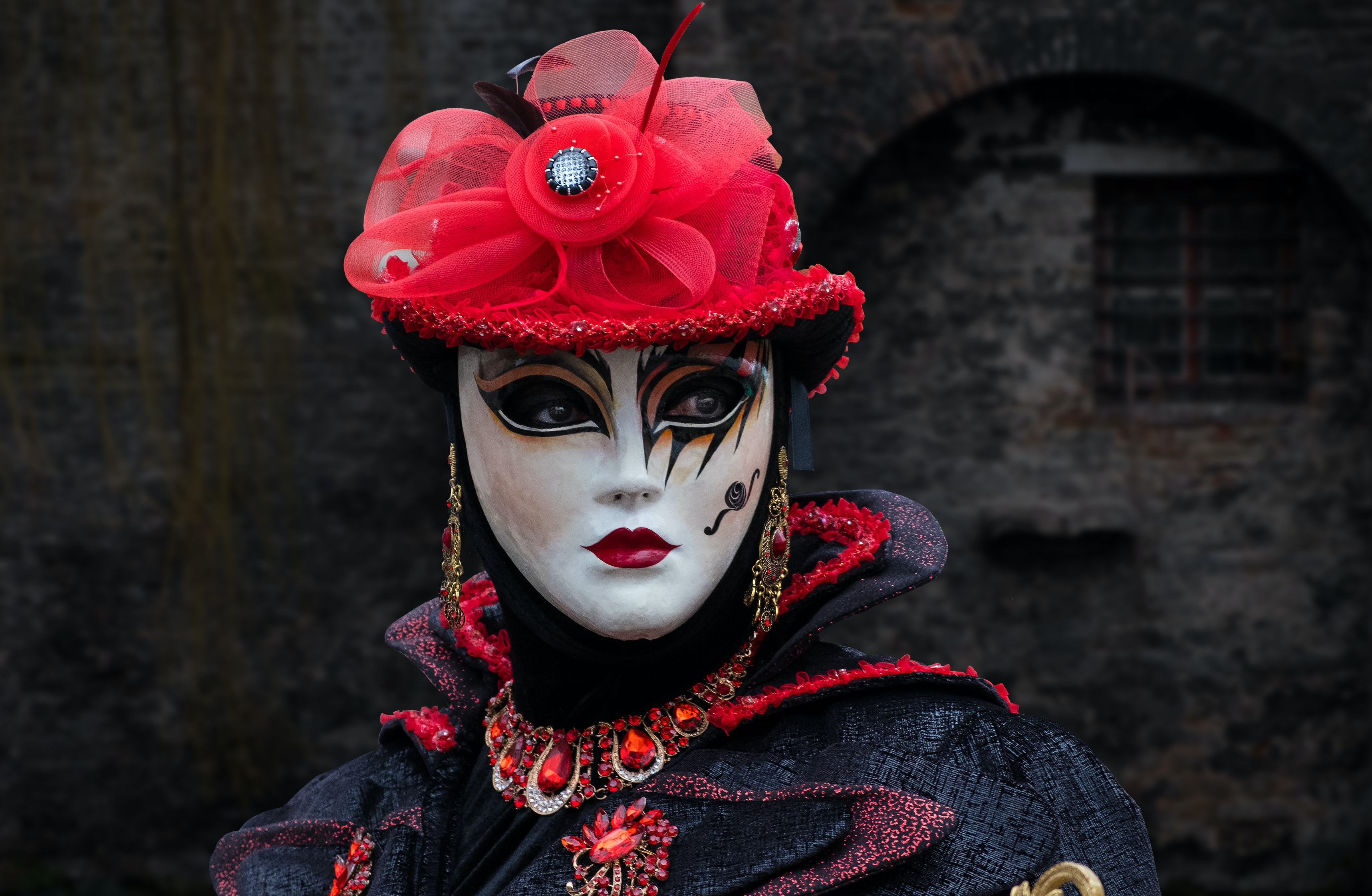shallow focus photography of person in masquerade mask