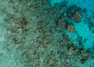 aerial photography of sea and stones