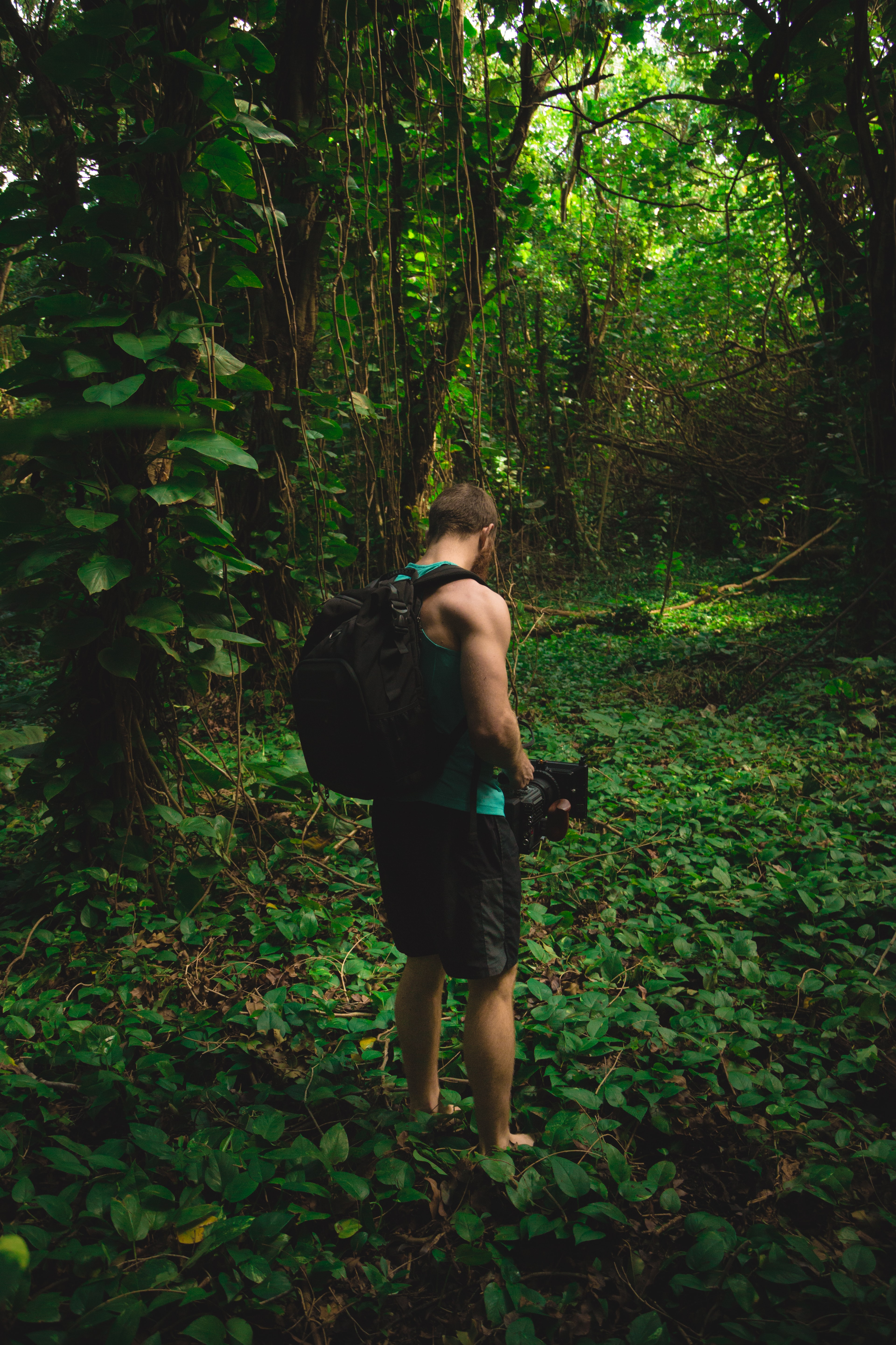 man stands near trees and carries black camera and black backpack during daytime