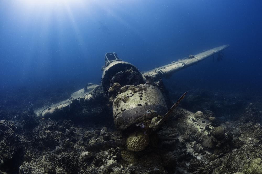 underwater photography of wrecked monoplane