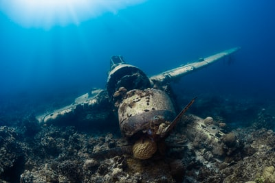 underwater photography of wrecked monoplane palau teams background
