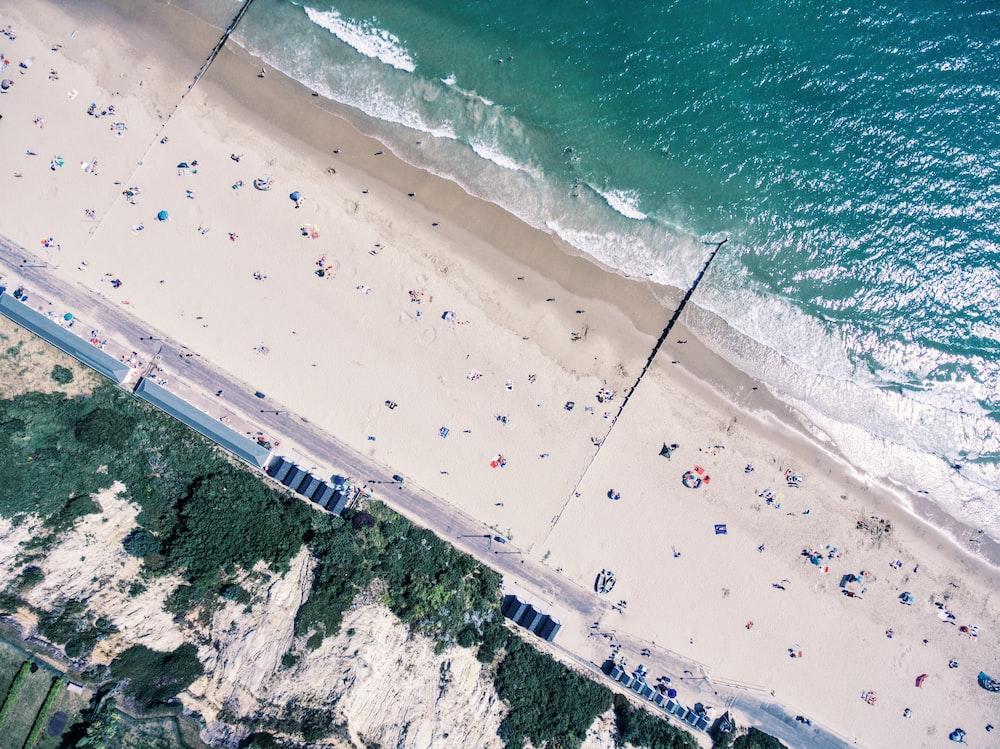 aerial photo of people near beach