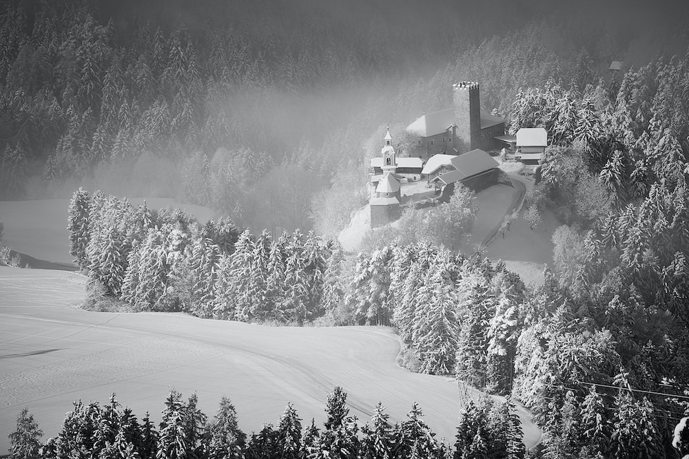grayscale photography of castle near on forest trees